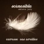 Visuel du groupe jazzy Scenesible